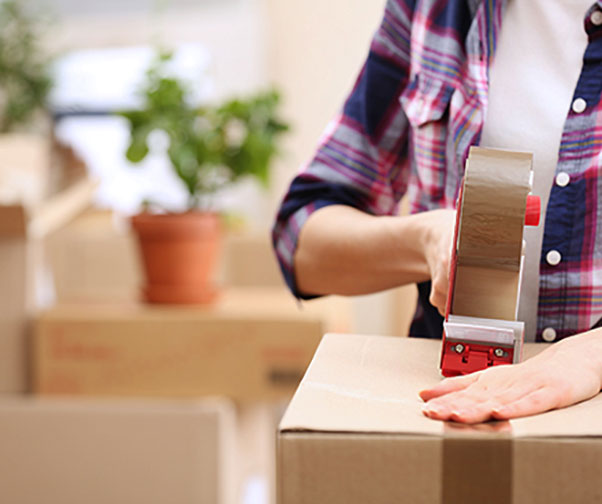 property conveyancing and selling